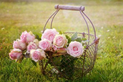 Ανοιξιάτικη περιποίηση του κήπου σας